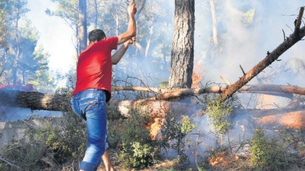 25 hektar bu yüzden mi yandı