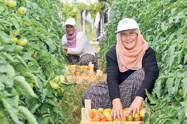 Mersin'in gülen yüzü yatırımlarla ortaya çıktı