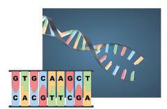 Genetik şifre çözülüyor