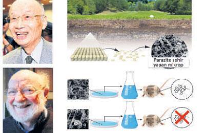 Parazitlerle Savaşa Nobel