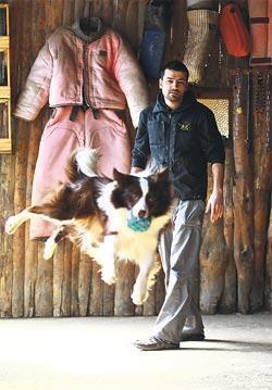 'Eğitim alan her köpek bu numaraları yapamaz'