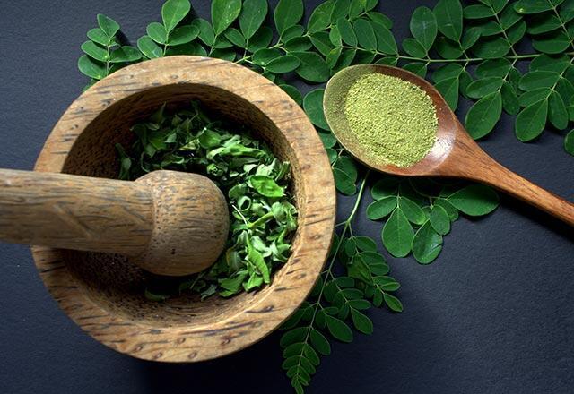 Moringa çayı nedir, moringa çayı nasıl kullanılır