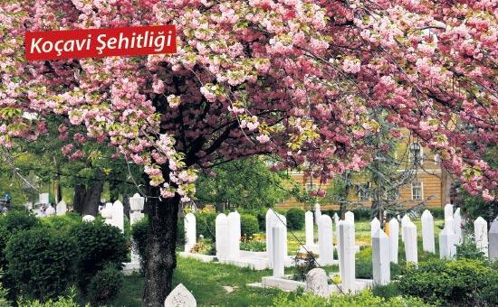 Küllerinden doğan şehir: Saraybosna