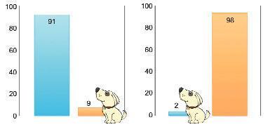 Köpek burnuyla kanser teşhisi