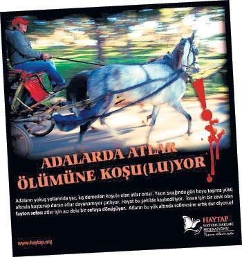 'Atları nostaljiye kurban etmeyelim'