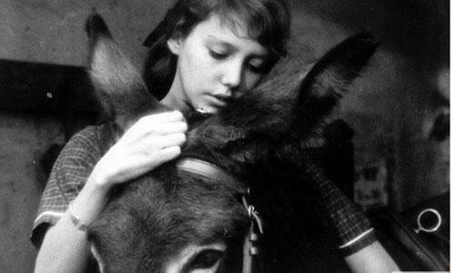 Nuri Bilge Ceylanın en sevdiği 10 film