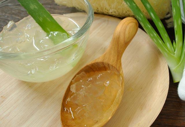 Aloe vera çiçeği nedir, bakımı nasıl yapılır