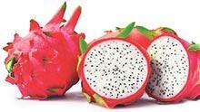 40 TLye Mersinli Ejder Meyvesi