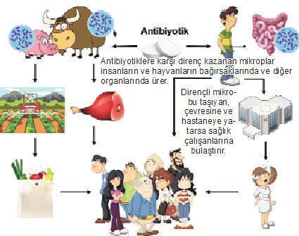 Süper mikroplara ilaç dayanmıyor