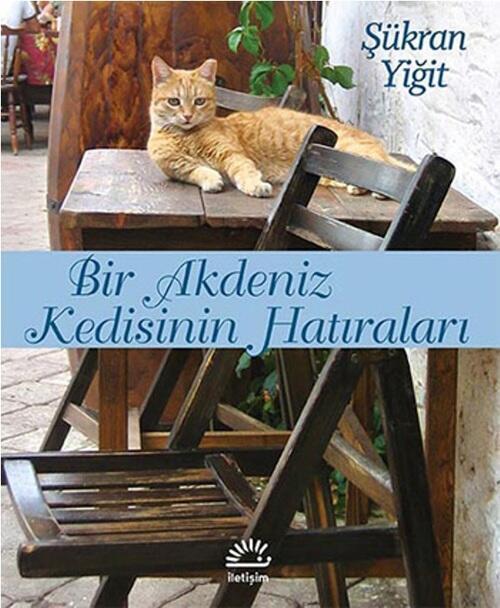 Kedilerin ilham olduğu 8 kitap