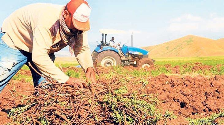 Çiftçilere 1.6 milyar lira destek - Son Haberler - Milliyet