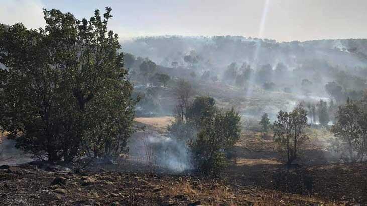 Arıcak'taki orman yangını söndürüldü thumbnail