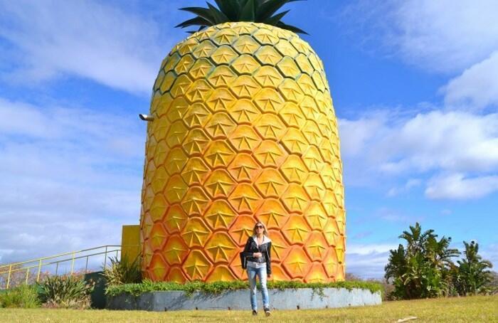Dünyanın En Komik Yapılarından Biri: The Big Pineapple