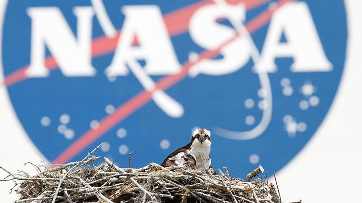 Bir ülke daha NASA ile anlaşma imzaladığını duyurdu thumbnail