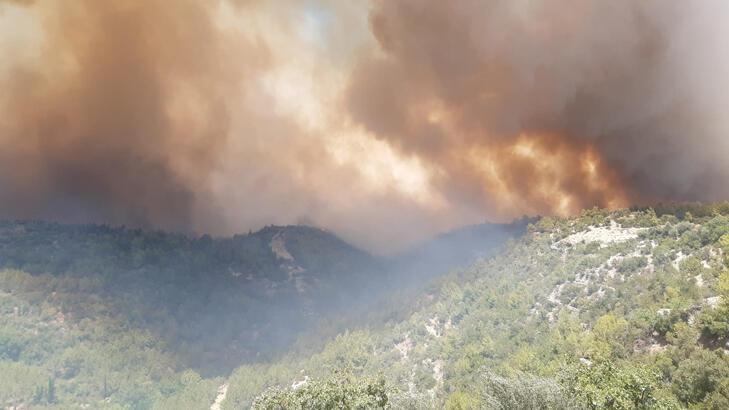Son dakika... Manavgat'ta 4 noktada orman yangını! Evler boşatıldı