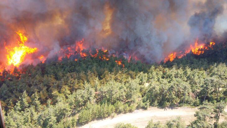 Orman yangınları turizmle ilgili sivil toplum kuruluşlarının da gündeminde thumbnail