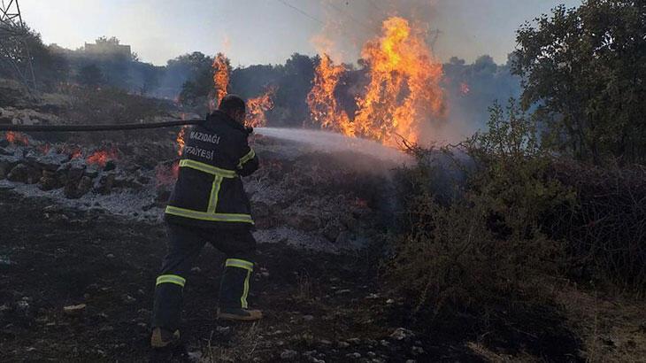 Mazıdağı'nda orman yangını