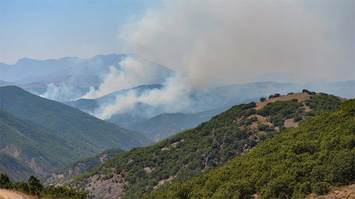 Tunceli'de örtü yangınlarından ikisi kontrol altında