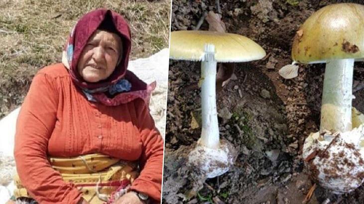 Mantardan zehirlenen büyükanne öldü, 6 torunu hastanelik oldu