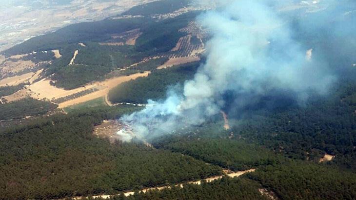 Son dakika... İzmir Foça'da orman yangını! Ekipler bölgede