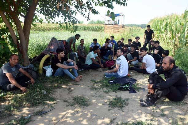 Afganistanlı göçmenler, 'Yunanistan sınır kapılarını açtı' söylentisi üzerine Edirne'ye akın etti