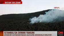 İstanbul'da korkutan orman yangını