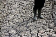 Honduras'ta kuraklık korkunç boyutta