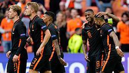 Hollanda grup aşamasını kayıpsız geçti!