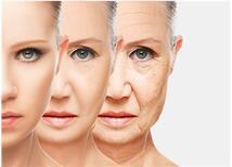 Anti-aging Beslenme