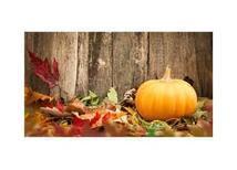 Sonbaharda Doğru Beslen, Yenilen!