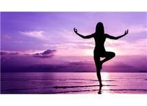 Yogacılar, Öz Yogacılar ve Daha da Öz Yogacılar