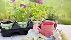 Bahçe ile ilgili merak ettiğiniz sorular ve cevapları