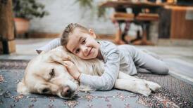Evcil hayvanlarda obezite riski nasıl önlenir?