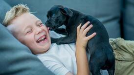 Köpeğinizin garip davranışlarının arkasında gizlenen anlamlar