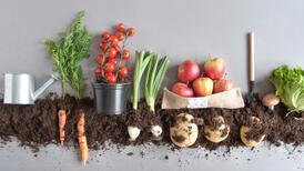 Organik ile organik olmayan gıda arasında nasıl bir fark var?