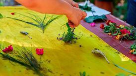 Köyceğiz Aromatik Bitkiler Evi ile Muğla ziyaretçilerini bekliyor