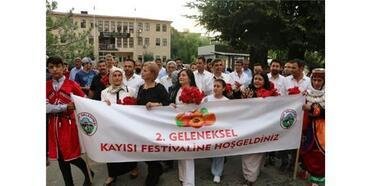 Iğdır'da Kayısı Festivali Başladı