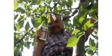 Cep Telefonu İle Konuşmak İçin Ağaçlara Ve Çatılara Çıkıyorlar