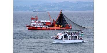 Balıkçıların İstavrit Mesaisine İlgi