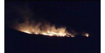 Elazığ'da Ormanlık Alandaki Yangın Korkuttu