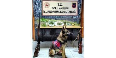 Jandarmadan Uyuşturucu Operasyonu: 2 Tutuklama