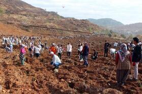 Fethiye'de 10 bin 300 fidan dikildi