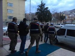 Siirt'te, hayvan hırsızlığına 4 tutuklama