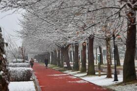 Yollarda karla mücadele, parklarda kar keyfi