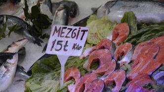 Karadeniz'de hamsi azaldı, mezgit arttı