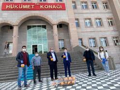Ulukışla'da Akdeniz Meyve Sineği mücadelesi