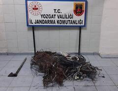 Yozgat'ta kablo hırsızlığına 2 gözaltı