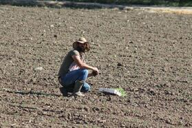 Manyaslı çiftçi tarlada bayram mesaisi yaptı
