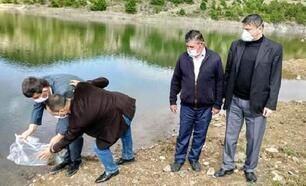 Orhaneli'de bin 200 sazan yavrusu gölete bırakıldı