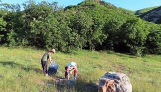 Tunceli'de doğaseverler çöp topladı
